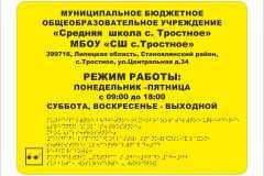 15.03 Средняя  школа с. Тростное _тактильная табличка с дублированием Брайля 60х40 см